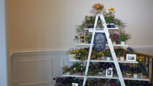 Wedding Reception Plant Favors